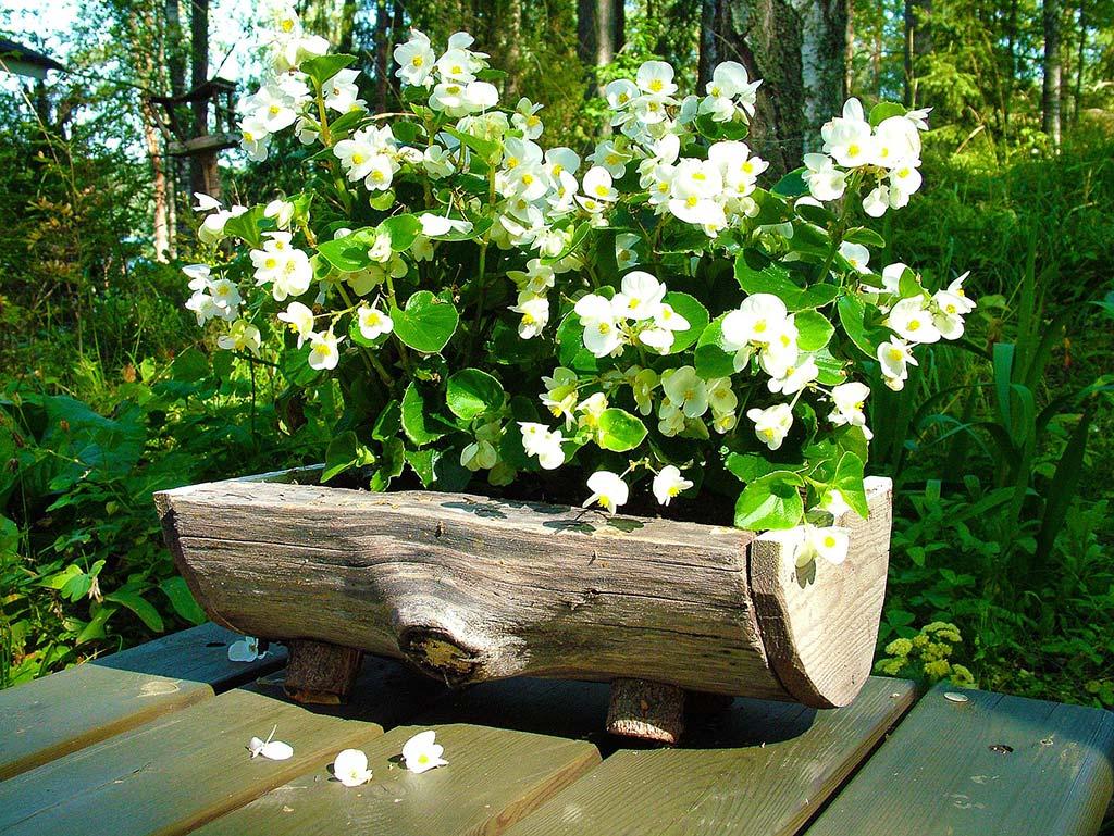 Pflanzgarten aus Holz
